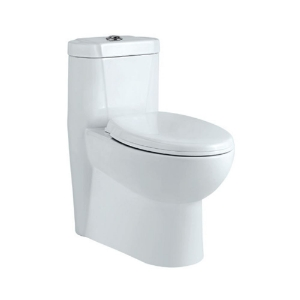 Picture of Single piece-WC