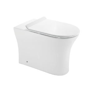 Picture of Rimless Back to Wall WC