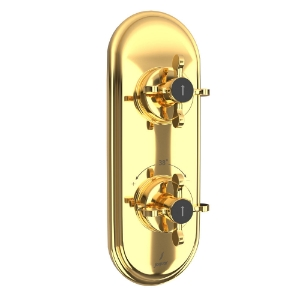 Picture of Aquamax Thermostatic Shower Mixer - Full Gold